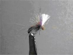 CDC lila Wing Dun